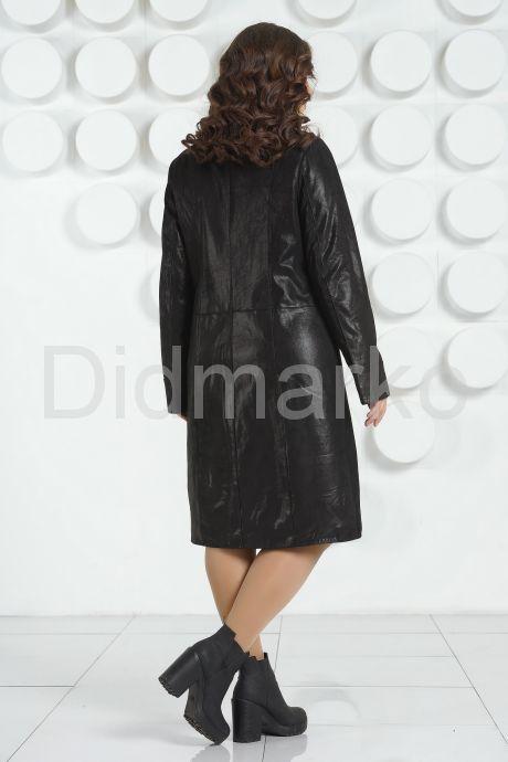 DMG6626_d